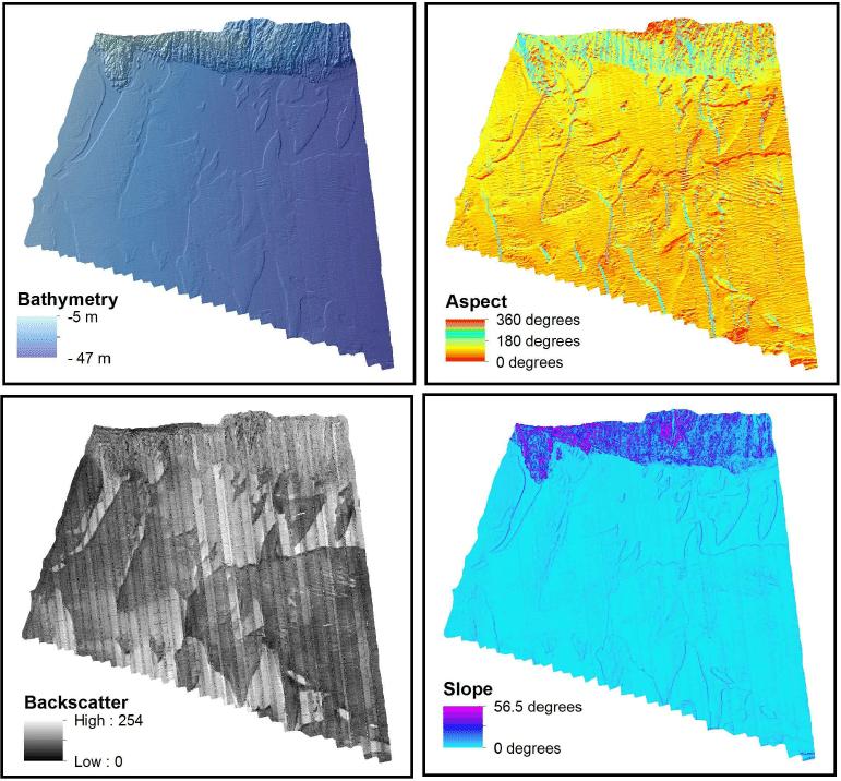 Habitat-Mapping